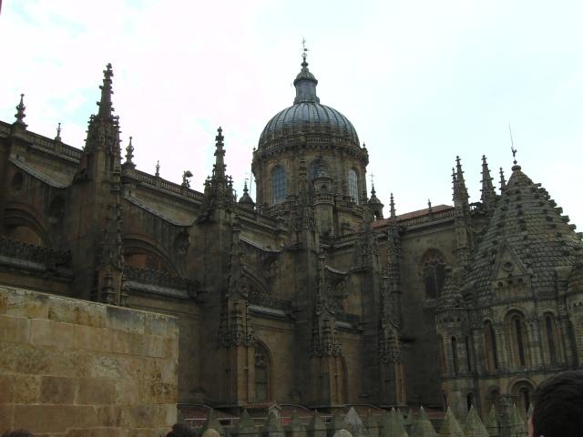 Vista desde la torre de la catedral de Salamanca (2)